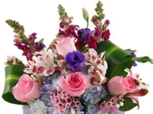 Our signature display of beautiful blue hydrangeas, pink roses, purple lisianthus, alstromerias, snapdragons and masangena leaves in an elegant glass vase.