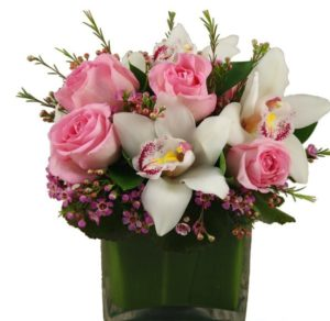 "A splendid arrangement of captivating pink roses, white cymbidium orchid blooms, and wax flower in a square 5x5 glass vase. This arrangment embodies love and romantisicm, making it a pefect gift for any loved one.   Approximately - 10""H X 10""W"